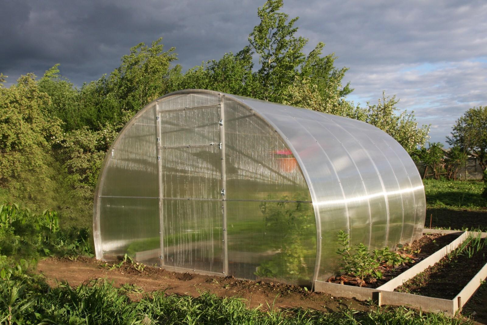 skleník LANITPLAST DNĚPR 3,14x8 m PC 8 mm